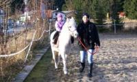 Ponyfuehren_Aki_13_11_11.jpg